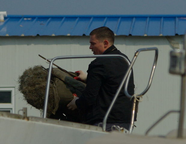 Субботник 2009