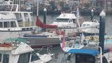"""Пять яхт из Владивостока поборятся за звание сильнейших в южнокорейской регате """"2000 островов"""""""